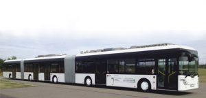 長いバス1