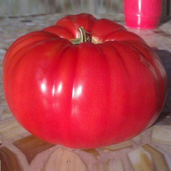 世界一甘いトマト3